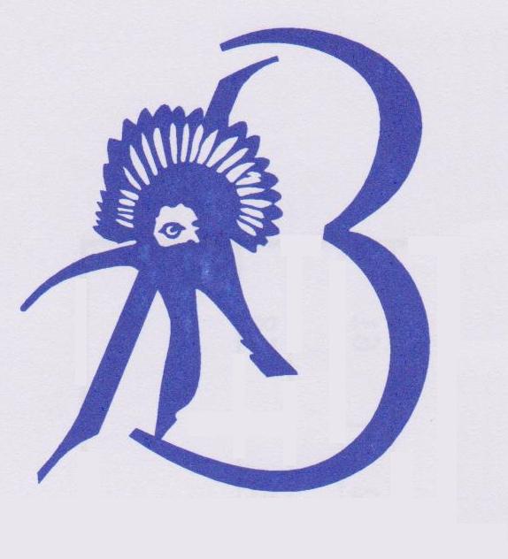 logo for Bryanston Squash Club