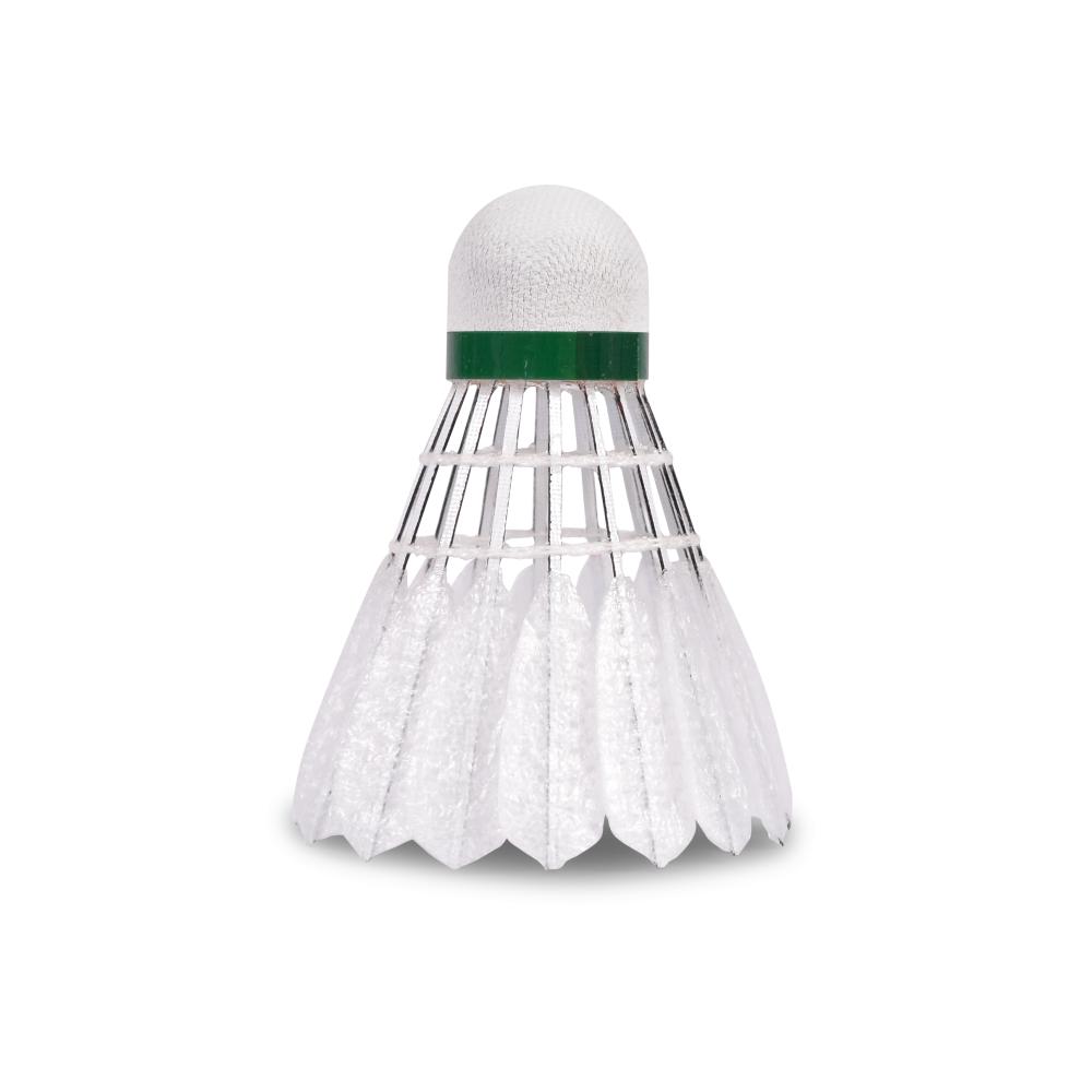 logo for SBS Badminton Club