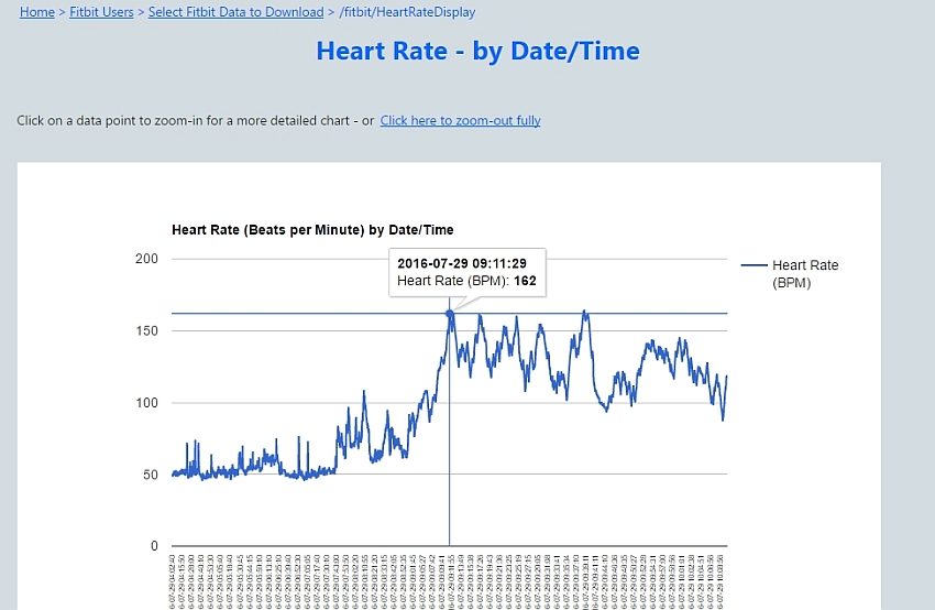 View/Download Your Personal Fitbit Data!